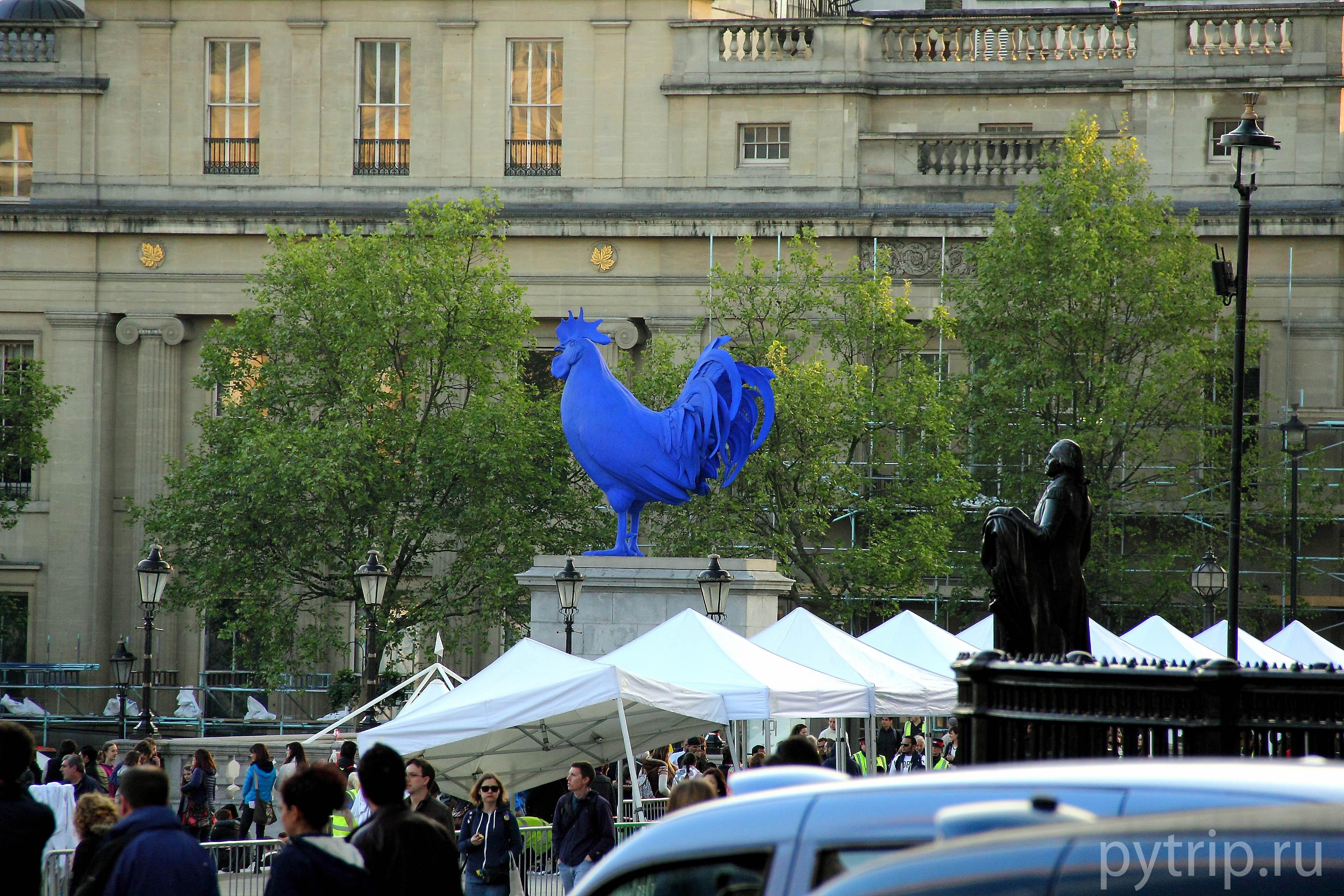 Синий петух на Трафальгарской площади