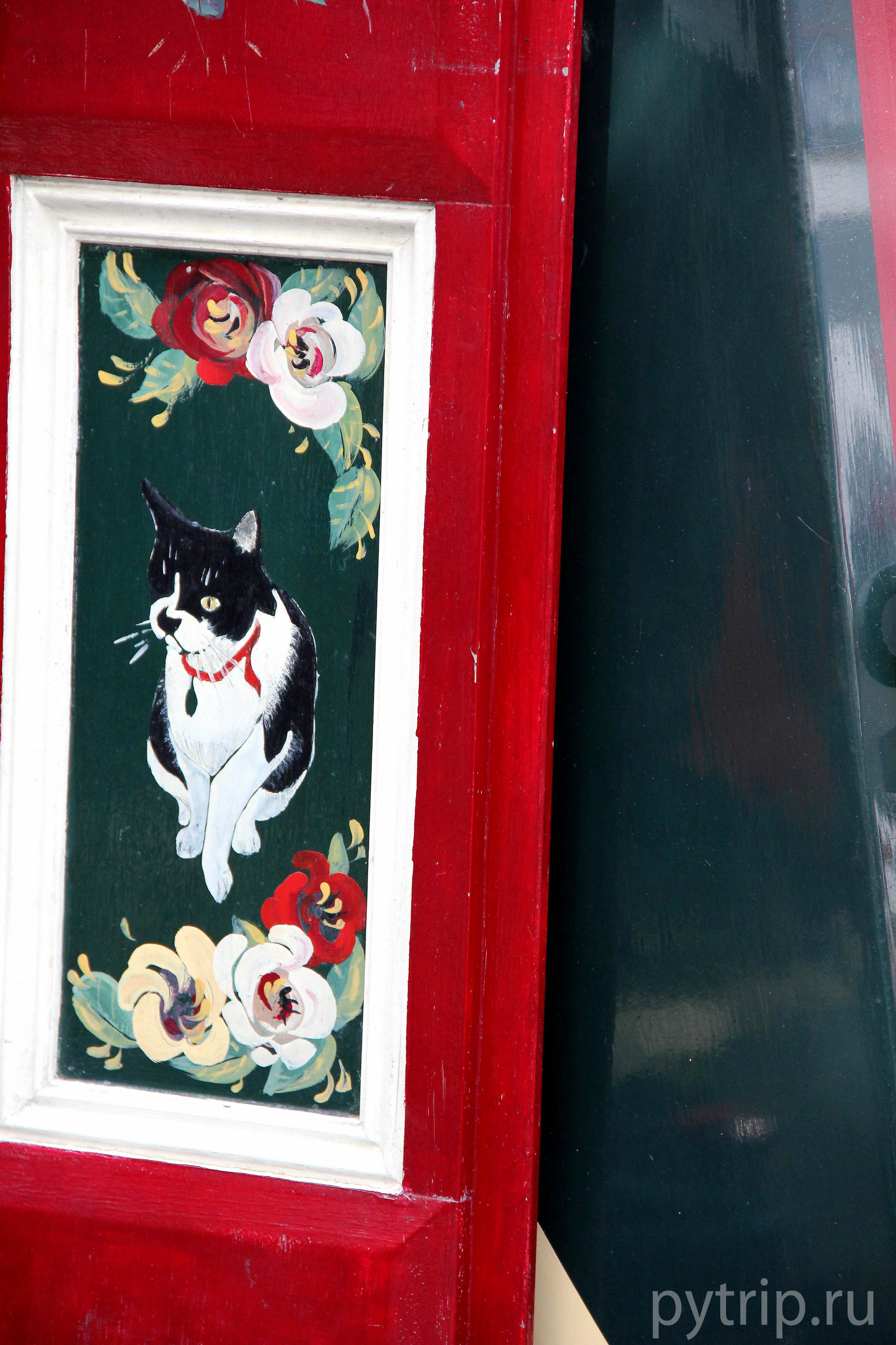 Кошка на двери