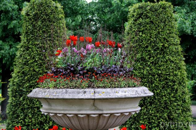 Клумбы в садах королевы Марии