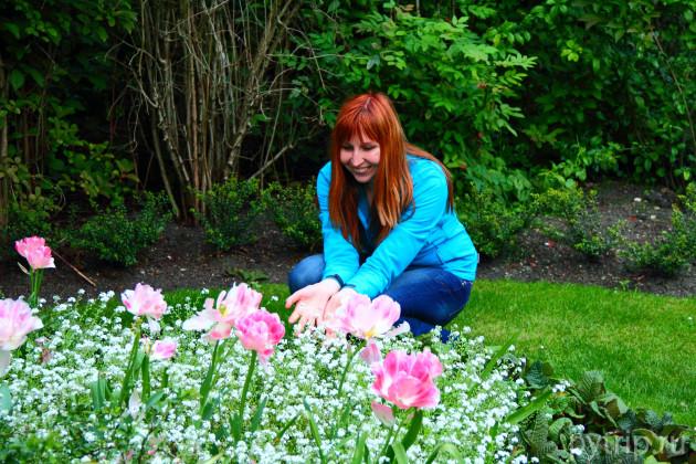 В мае тут прекрасные тюльпаны