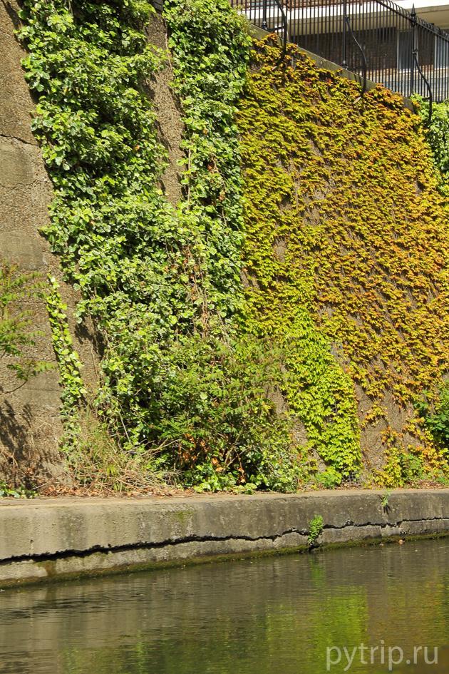Ридженс канал