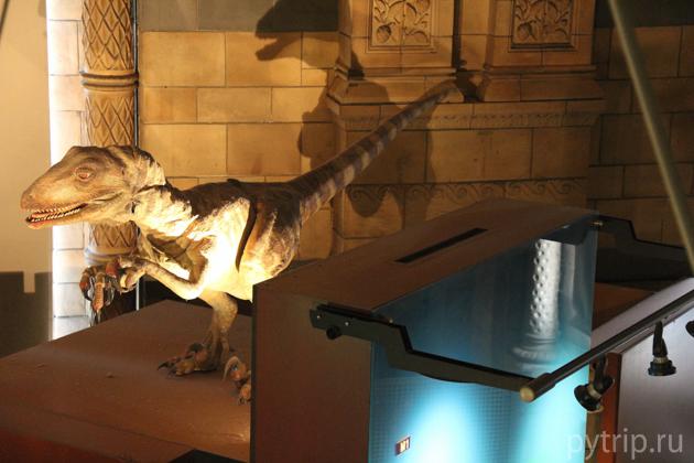 динозавр музей естествознания