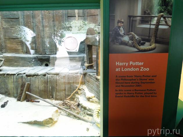 Гарри Поттер в Лондонском зоопарке