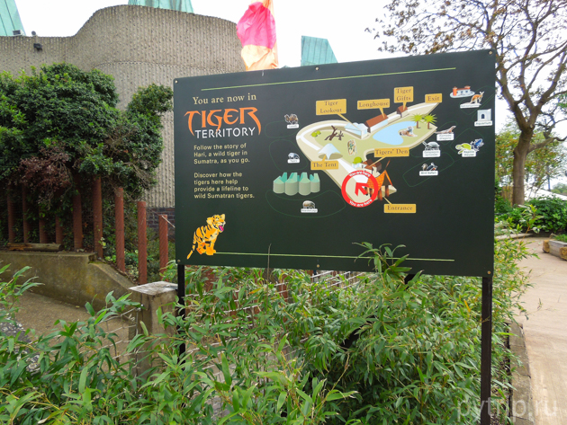 зоопарк Лондона фото
