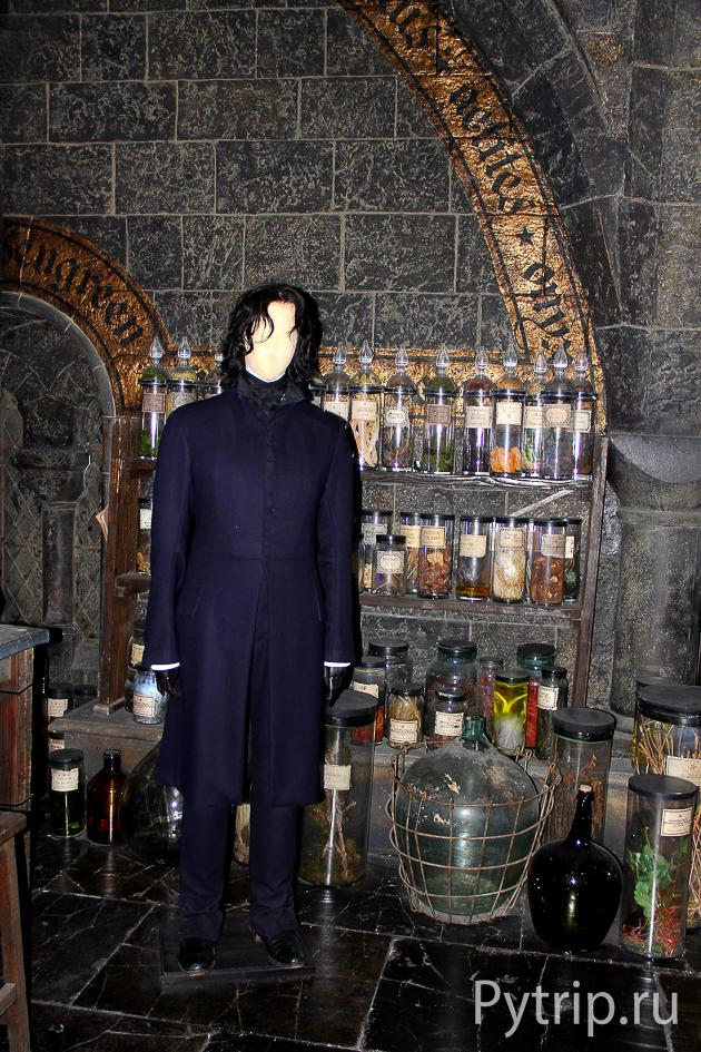 Профессор Снейп в своем кабинете