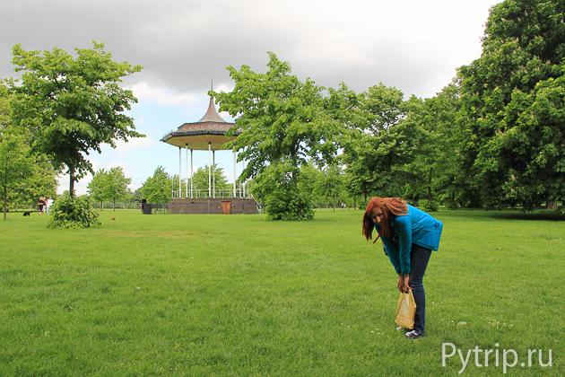 Кенсингтонский парк фото