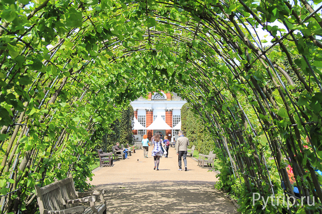 дорога к оранжереи