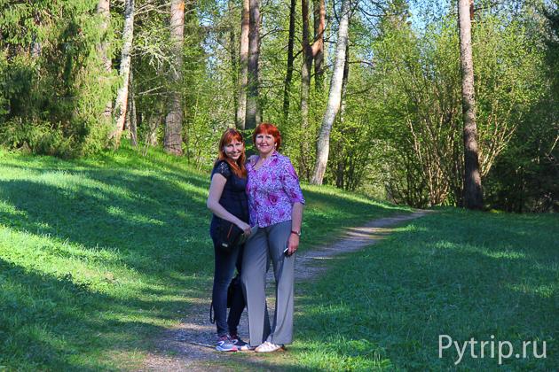 дорога к деревне Михайловское