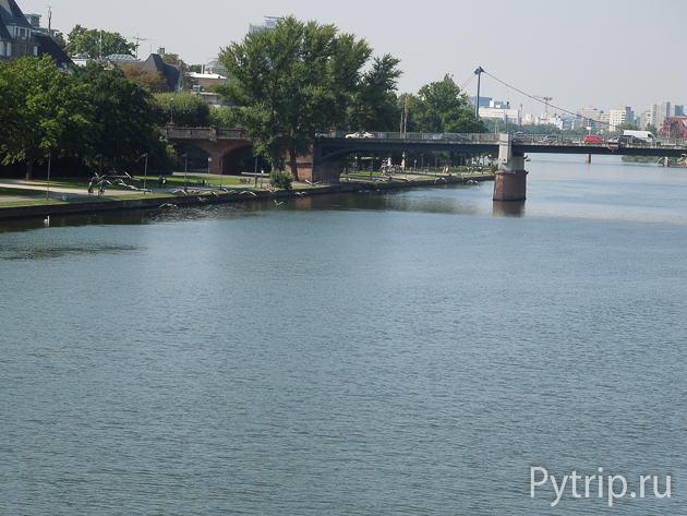 Рейн с моста Eiserner Steg