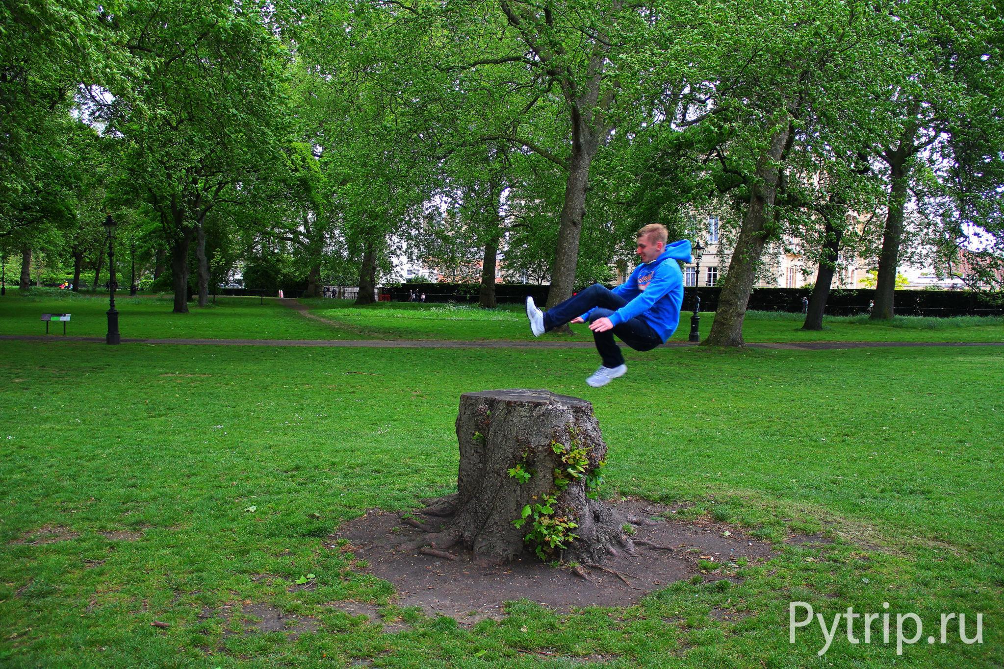 Грин парк в Лондоне