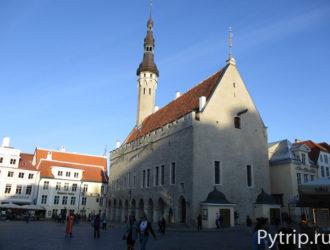 Как получить шенгенскую визу в Эстонию в 2020 году?